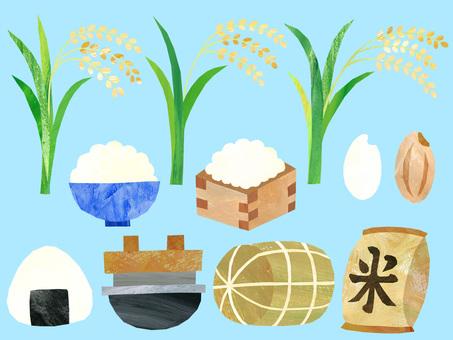 Rice material