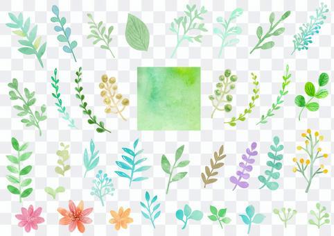Watercolor material 049 Leaf set