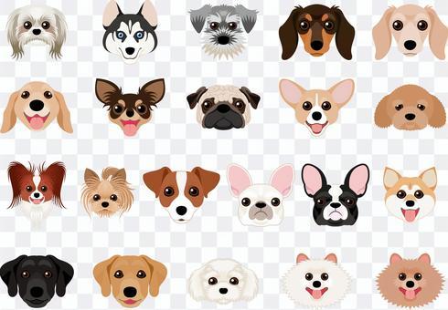 Dog breed set