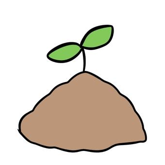 帶芽的土壤