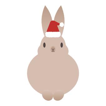 Brown rabbit wearing a santa hat