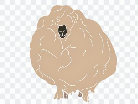 Impressive fluffy sheep