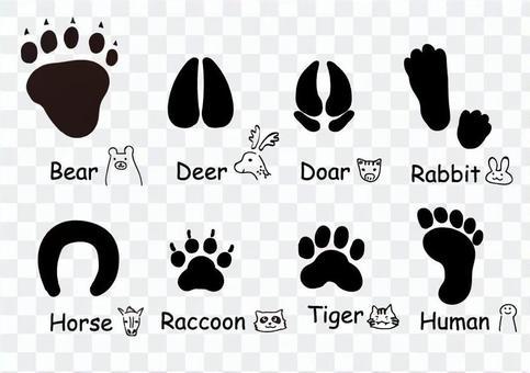 腳印套各種各樣的動物