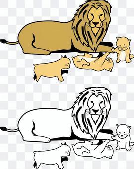 Lion carnivorous lie down resting parent and child male