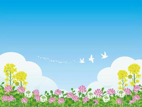 Flower of flowers and a blue sky and a bird notice frame