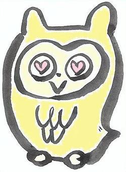 貓頭鷹黃色貓頭鷹黃色