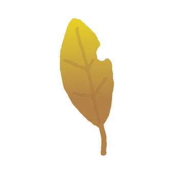 墮落的葉子_食蟲者