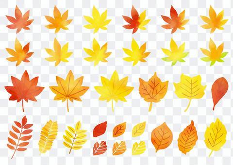 葉っぱ  秋カラー2