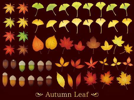 Autumn leaves · dark brown (CS 2 ↑)
