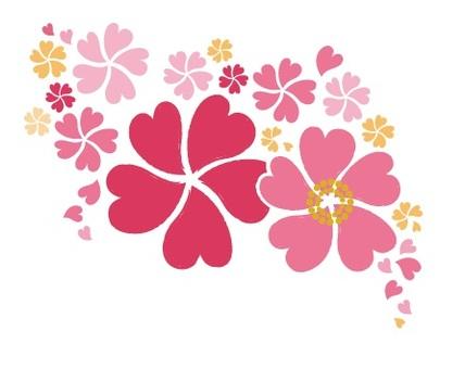 樱花在心中