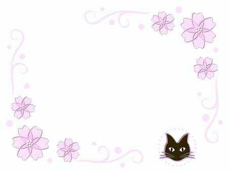 Sakura and cat (cs5)