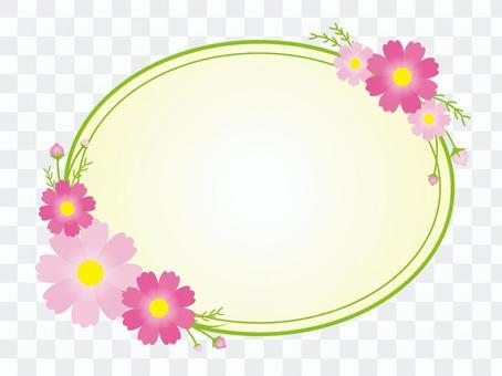 波斯菊圆框架
