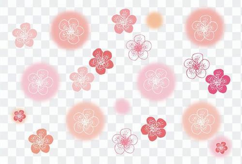 Plum and peach blossom chalk style