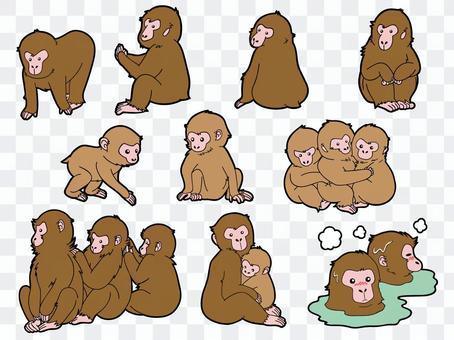 10隻猴子