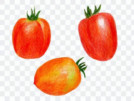 ボンジョールノ(色鉛筆画のイタリア野菜)