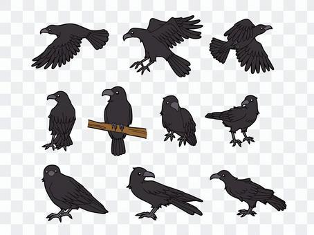 10種烏鴉