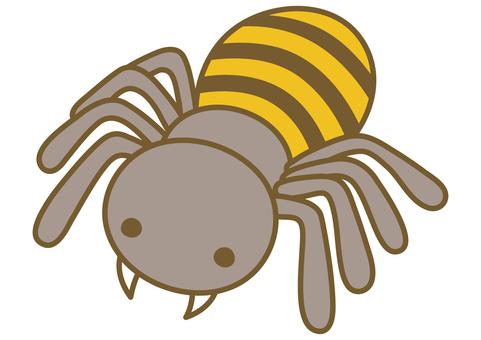 Cute spider illustration