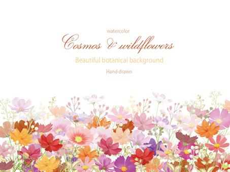 宇宙和野花的水彩畫框