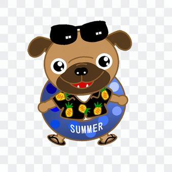 帕格的夏天