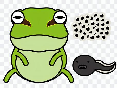 Frog parent and child