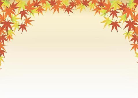 秋天的樹葉紋理