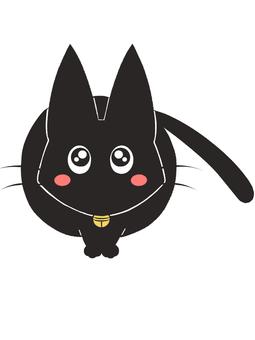 Black cat staring at the flush