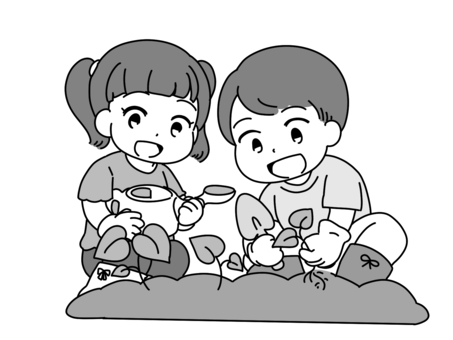 小學生紅藷苗種植經驗