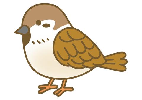 一隻可愛的麻雀的插圖