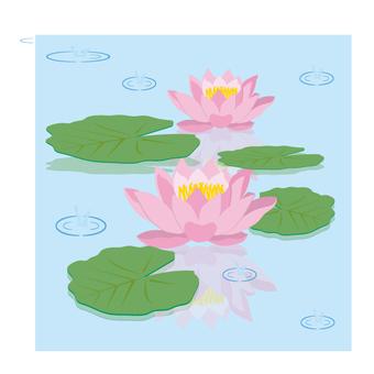 Beautiful water ream flowers