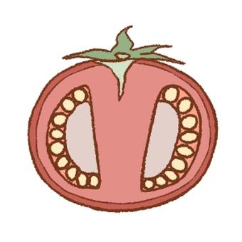 番茄橫截面