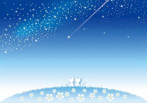 在夜空中的射擊之星
