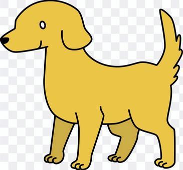 Dog (Golden)