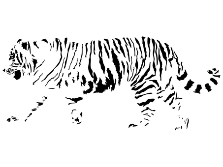 New Year's card material_tiger_2