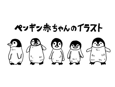 Baby penguins illustration