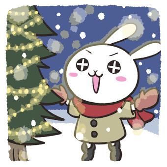 Rabbit watching the illuminations
