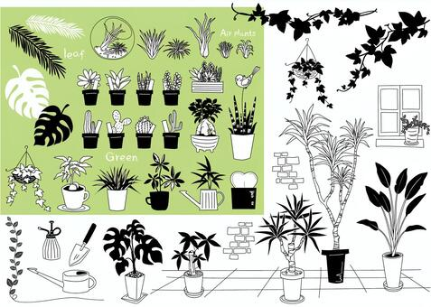 Plant plant material