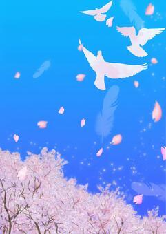 비둘기가 날고 푸른 하늘 벚꽃 a4