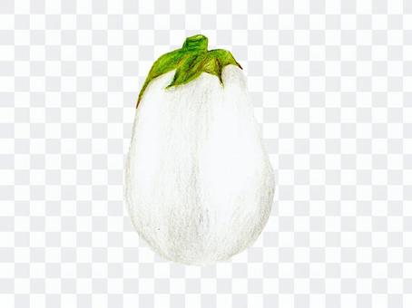 白茄子(彩色鉛筆素描)