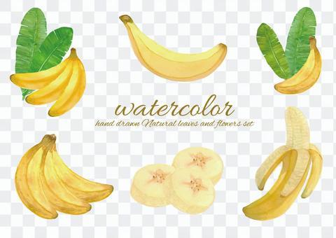 水彩香蕉3