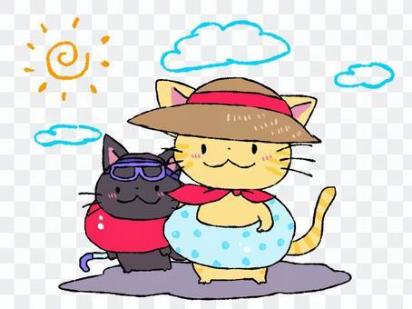 猫 海水浴