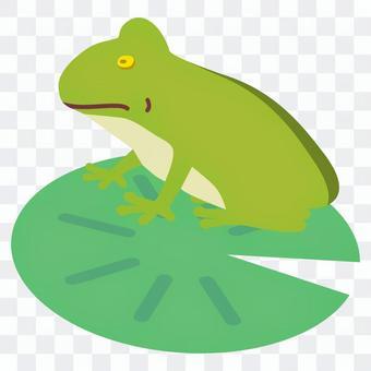 蓮の葉に乗る蛙