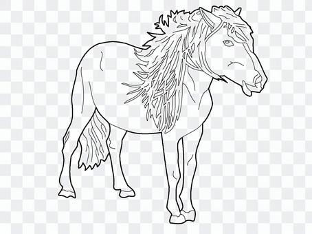 Horse Coloring 2