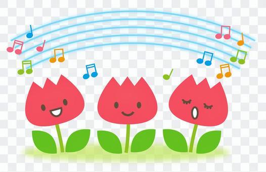 Tulip music concert