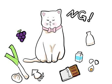 你不應該餵貓的東西