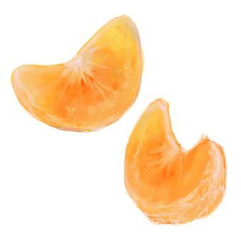 Mandarin oranges (bunches / bushes)
