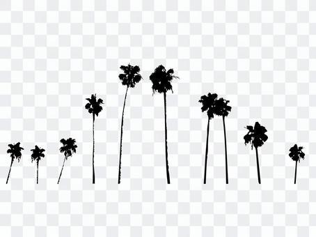 棕櫚樹剪影集2