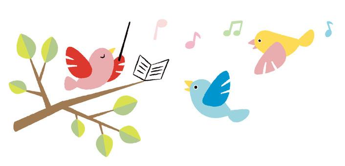 Chorus of the little bird