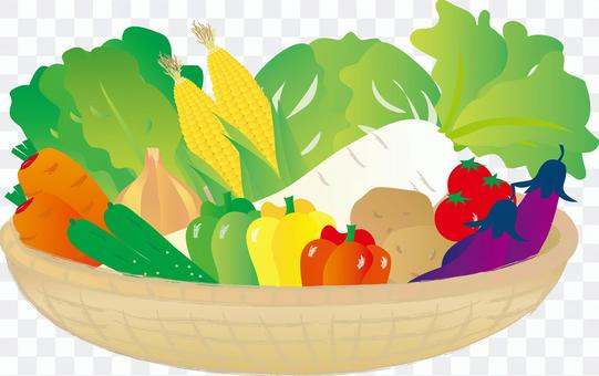 各種蔬菜籃子2