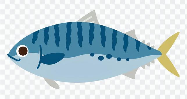Sea creatures - mackerel