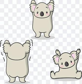 Koala set